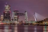 Faryda Lindeman - Rotterdam skyline_