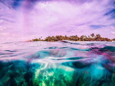 Jenna Stevens - Island Life