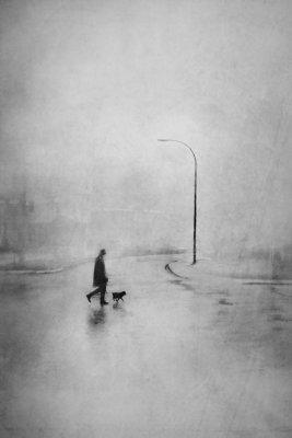 Daniel Castonguay - Walking Brutus