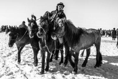 Aart Sliedrecht - Horse race Mongolia II