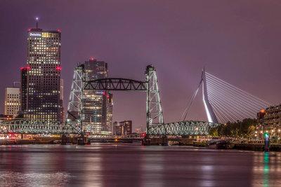 Faryda Lindeman - Rotterdam skyline