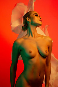 Jay Tang - Blossom 1