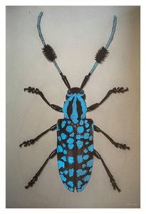 Alex van der Lecq - Bugs Blue