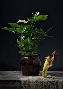 Ursula van de Bunte - Barb Erotics Banana