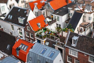 Daan Vazquez - Amsterdam Miniatures 10