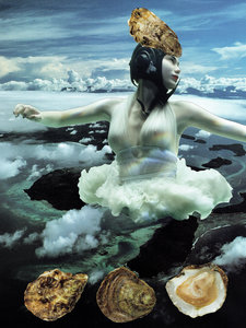 Tineke Sips - Rebirth of the Oyster