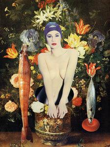 Tineke Sips - Between Flowers & Fish